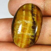 Natural Tiger's Eye Oval Cabochon 23.95Cts Loose Gemstones