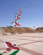 Chinese Kite Train - Eagle, Fly 60 Kites at once