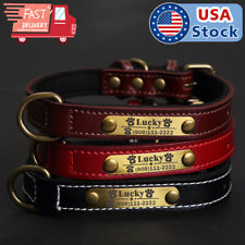 Soft Padded Leather Dog Collar Strap & Custom Brass Name Plate Id Tag