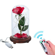 Beauty And The Beast Enchanted Rose Glass Dome Led Romantic with Remote control