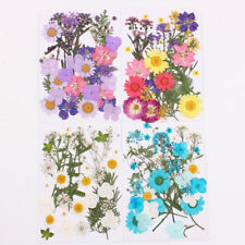 Assroetd Real Dried Flowers Pressed Leaves for Epoxy Resin Jewelry Making DIY AU