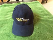 Sims Snowboards Flexfit  Blue Baseball Hat Cap Yupoong Rare
