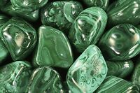 "Polished Birds Eye Malachite 1"" Natural Heart Chakra Healing Crystal Stone"