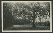 Plein a.d. voet van Montferland