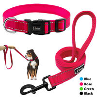 Adjustable Nylon Dog Collar and Leash Set Pet Walking Puppy Collar Lead S M L