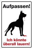 Aufpassen Bissiger Hund Blechschild Schild gewölbt Metal Tin Sign 20 x 30 cm