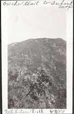 VINTAGE 1922 ON TRAIL TO ORCHARD CAMP MT WILSON LOS ANGELES CALIFORNIA OLD PHOTO