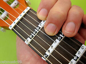 GUITAR NOTE STICKERS 3/4 & 1/2 SIZE CLASSICAL Spanish Fretboard Labels + Lessons