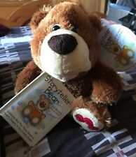 STORYTELLER BEAR NEW WITH LABEL NO BOX
