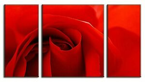 Red Rose Photo on Canvas 3 Panel Framed Wall Art Ready to Hang Decor