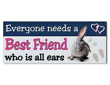 BEST FRIEND Rabbit Sign Plaque home Hutch House cage garden door wall gift idea