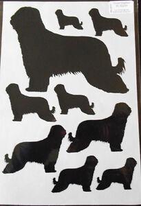 Briard stickers
