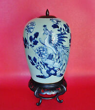 Qing Chinese Phoenix Bird of Immortality & Roses Celadon Porcelain Ginger Jar