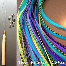 Feathers Hair Extensions Kit Lot 20 Grizzly Purple Blue Green Long NOMER KIT
