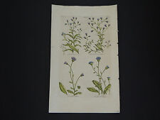 Sir John Hill, Botanical, The Vegetable System 1761-1775 Simson #10