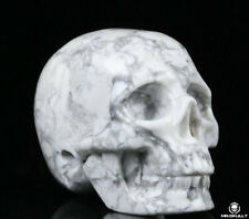 "2.0"" Howlite Carved Crystal Skull, Realistic, Crystal Healing"