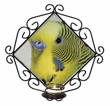 Yellow Budgerigar, Budgie Wrought Iron T-light Candle Holder Gift, AB-51CH