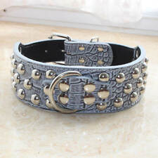 Gator Leather Spiked Studded Dog Collars for Medium Large Dogs Pit Bull Terrier