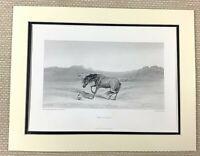 Edwin Landseer Antico Incisione Stampa Cavallo Pittura 'Spaventato' Equestre Art