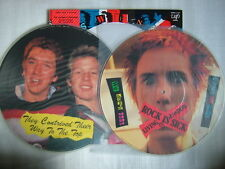 PICTURE VINYL WITH POSTER / SEX PISTOLS THE SWINDLE CONTINUES / WITH OBI