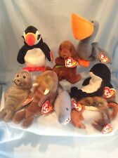 Ty Beanie Babies Lot of 8 Sealife All Retired 1995 to 1999 3+ Boy Girl $11.99