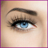 Fully Stocked FAKE EYELASHES Website|FREE Domain|Hosting|Traffic