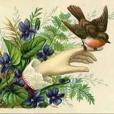 Decorative Ceramic tile 4.25 X 4.25 inch, Illustration Victorian Bird #3