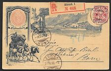 Switzerland covers 1893 private registered PC HORSES Zürich to Bern