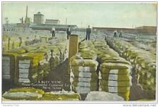Texas - Paris - Trans Continental Compress Co - Cotton Bales - 1909