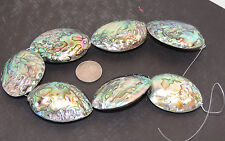 Paua Abalone Large Shell Beads New Zealand 7 piece strand over 1 inch (10187)
