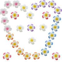 Eg _5pz Plumeria Fiore Forcina Fermaglio per Capelli Matrimonio Sposa Fotografia