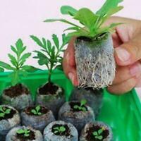 Peat Pellets Seed Starting Plugs Seeds Starter Pallet New Seedling Low Soil C5A2