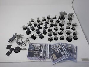 Warmachine Miniature Collection Lot Wargaming  Auc2