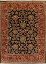 Traditional Floral Black and Burgundy Agra Oriental Area Rug Hand-Knotted Wool