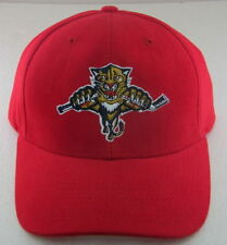 check out 57f0b cdd56 Florida Panthers NHL Fan Caps   Hats