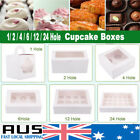 Cupcake Box Cases 1 hole 2 hole 4 hole 6 hole 12 hole 24 hole Window Face Gift