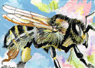 ACEO mixed media painting of a bee (an original-not a print or copy)