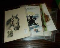 VINTAGE POSTCARDS ANIMALS  BUTTERFLIES, INCL  CATS HORSES ETC - SELECT POSTCARD