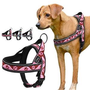 Medium Large Dog Harness Pet No Pull Bone Paw Print Mesh Padded Walking Vest S-L