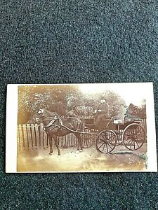 VICTORIAN CDV:MAN WITH HORSE DRAWN CARRIAGE