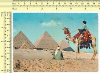#016 1960s Egypt The Pyramids of Giza vintage old original photo postcard