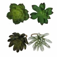 4 Pc Celebrate Spring Succulent Cactus Napkin Rings Holders Nwt Free Shipping