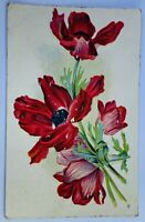 Antique Red Floral Flower Postcard Salisbury Missouri 1908 Beautiful Decor Green