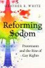 NEW Reforming Sodom: Protestants and the Rise of Gay Rights by Heather R. White
