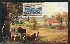 U.R.S.S. - Carte maximum 1955 - Troupeau de vaches