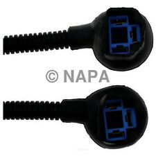 Headlamp Socket-4WD NAPA/WIRE PRODUCTS-NW 787108