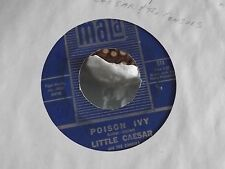 45 ! LITTLE CEASER AND THE CONSULS MALA RECORDS POISEN IVY / MY GIRL SLOOPY EXC.