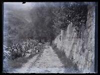 Paesaggio c1910 Foto Negativo Placca Da Lente Vintage VR18L1n5