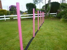 dog agility 6 ABS coloured Weave Poles with KC webbing spacer training.equipment