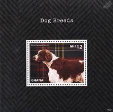 Welsh Springer Spaniel Dog Stamp Sheet (2014 Ghana)